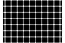 眼睛看到的黑点都是虚幻的你们相信吗