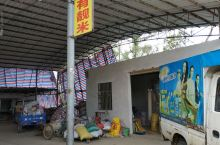 这不是随手拍吗?在广东肇庆龙母祖庙附近的一处乡村看到的