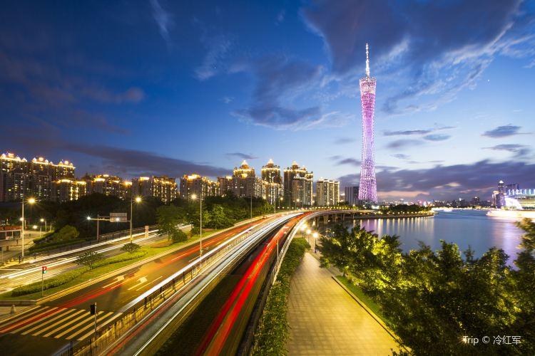 광저우 타워(광주탑)2