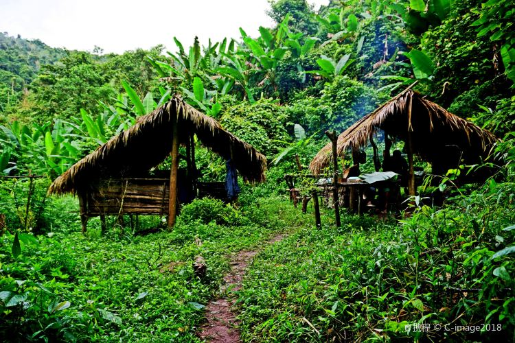 Nam Ha National Protected Area1