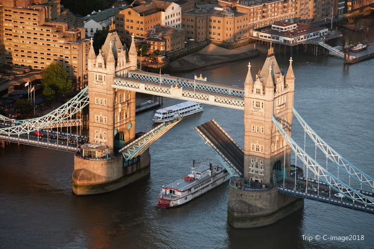 Thames River Cruise2