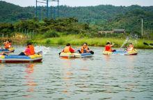 下渚湖国家湿地公园||下渚湖星空营地-团建拓展,踏春游,春秋游,休闲游之旅