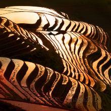 龙脊梯田图片