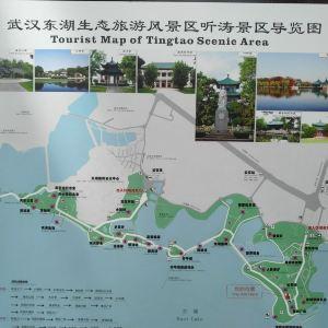 东湖听涛景区旅游景点攻略图