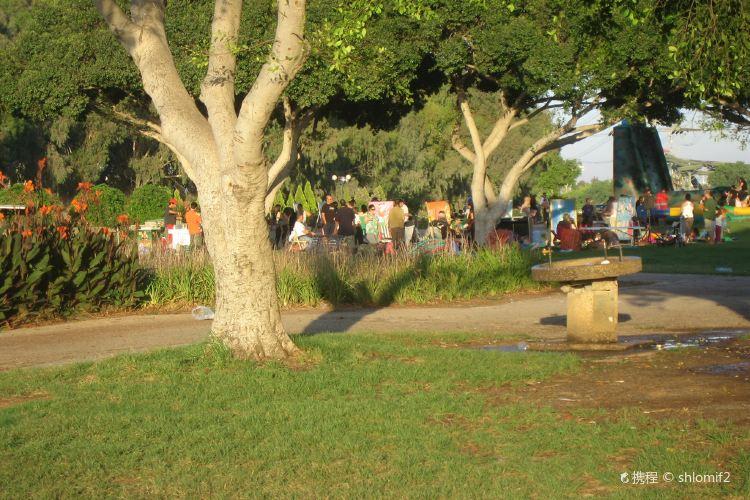 Hayarkon Park1