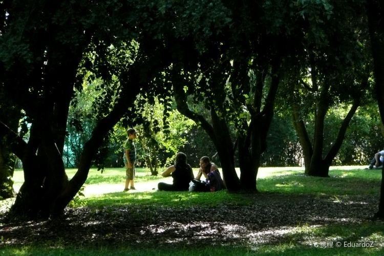Parque Araucano1