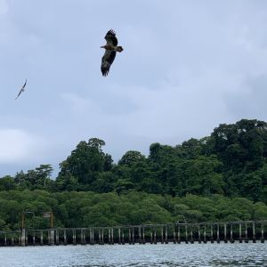 兰卡威跳岛游旅游景点攻略图