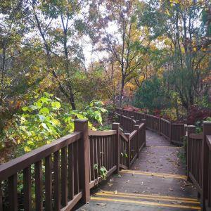 三台山国家森林公园旅游景点攻略图