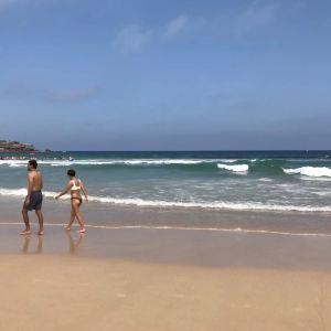 邦迪海滩旅游景点攻略图