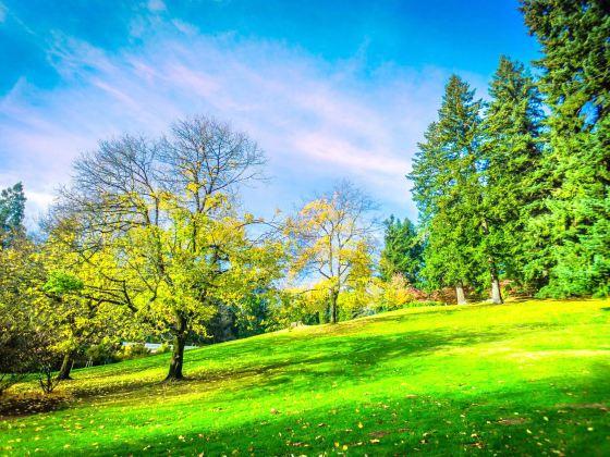 華盛頓公園