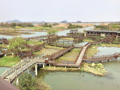 Xiazhu Lake Wetland Park, Deqing