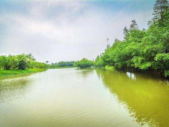 샤오냐오톈탕(소조천당)