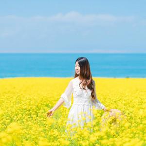青海游记图文-青海湖旅游攻略+大西北丨夏天最美的青海甘肃大环线,一次看尽万般风景