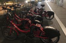 发现共享自行车