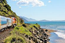 在新西兰重拾火车情结,4条景观列车带你领略新西兰纯净自然之美
