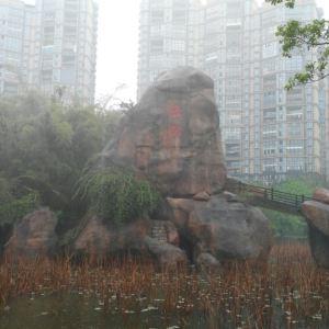 姜母鸭旅游景点攻略图