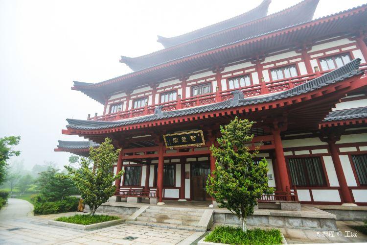 中國佛學院普陀山學院2