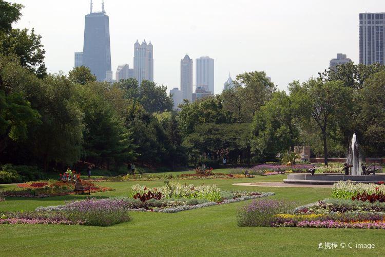 林肯公園 4