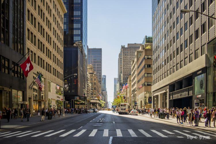 Fifth Avenue3