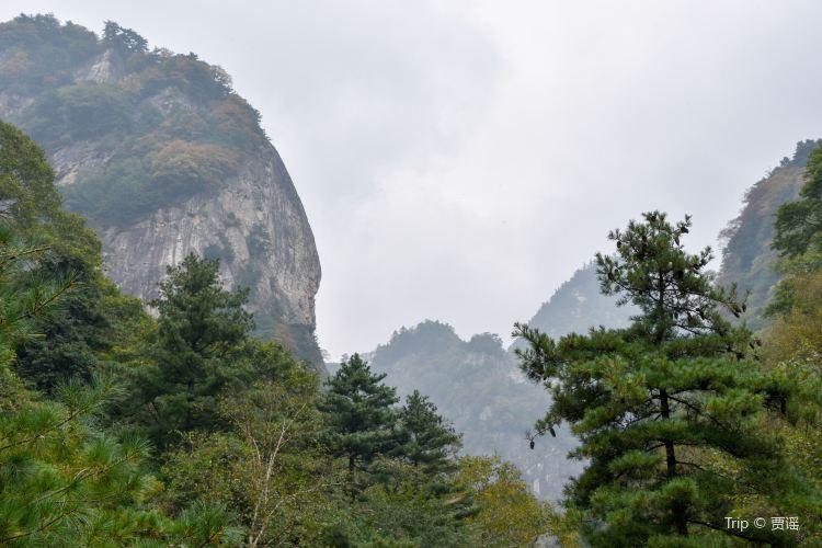 朱雀國家森林公園1