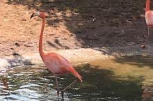 海南富力红树湾湿地公园