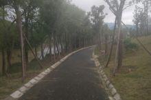 桃江沿江边风景