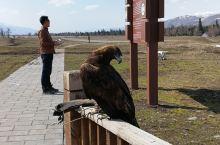 那拉提风景区 那拉提草原风景区------位于新疆伊犁州新源县境内,是世界四大草原之一的亚高山草甸植