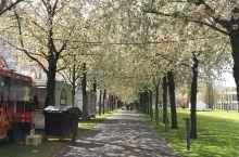 汉诺威展览中心