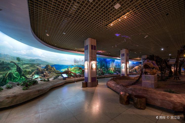 다롄 자연박물관3