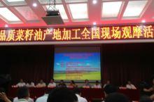 在枝江参加全国高品质油菜加工现场观摩会