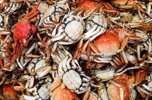 壕吃大闸蟹