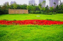 骑迹哈尔滨——群力体育公园 群力体育公园         坐落在哈尔滨道里区群力新区丽江路、群力大道
