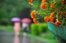 广州云台山公园