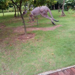 中澳友谊花园旅游景点攻略图