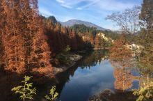 大别山的秋色。