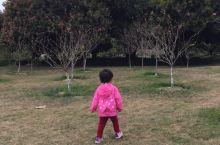 紫马岭公园游玩...