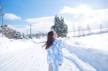 纯色北海道 童话不止是说说而已