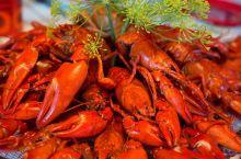 小龙虾横行柏林,获准上餐桌,吃货们:放开它们,让我来!