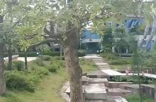 梧州沧海公园