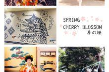 #激情一夏#水菱环球之旅 の夏之弘前城