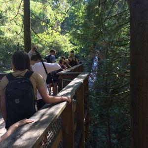 林恩峡谷公园旅游景点攻略图