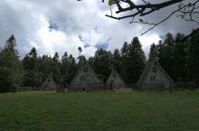 仙女山森林公园