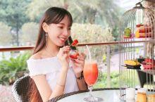 粤海喜来登 | 奥斯卡晚宴明星餐厅神级主厨祭出高颜值高性价比下午茶