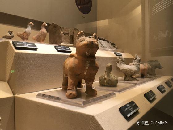 Luzhou Museum
