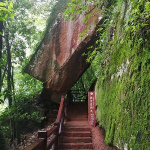 赤水丹霞旅游区·燕子岩旅游景点攻略图