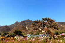 🇨🇳自然的轻语,灵性和静美⛰️白石山世界地质公园