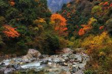 四川雅安大川镇之三  南天门景区(大熊猫保护区)