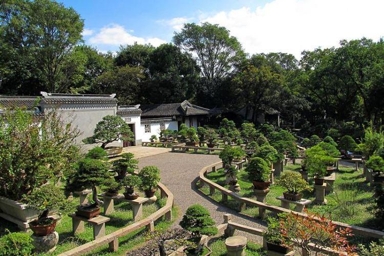 Wanjing Mountain Villa3