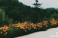 夏天的锅盔山