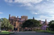 #瓜分10000元#悉尼又到了最美蓝楹花季节